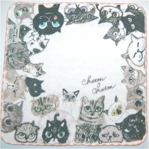 泉州タオル ガーゼ無撚糸 シンジカトウchaton 100匹の猫たちの物語「アイコンタクト」 23×23 |ruinok-2