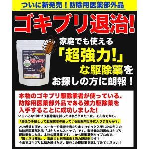 ゴキブリ駆除 業務用ゴキブリ駆除薬 ゴキちゃんストップ 防除用医薬部外品 ゴキブリ対策|runrun|03