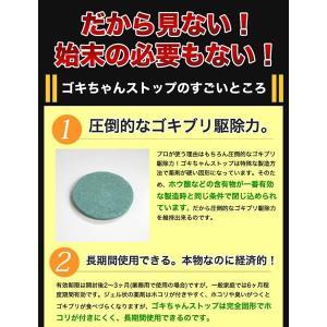 ゴキブリ駆除 業務用ゴキブリ駆除薬 ゴキちゃんストップ 防除用医薬部外品 ゴキブリ対策|runrun|04