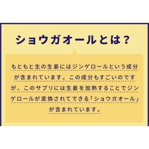 生姜サプリ ショウガオール 女子のおまもりサプリショウガオール60粒 発酵黒生姜 黒しょうが 生姜サプリメント|runrun|06
