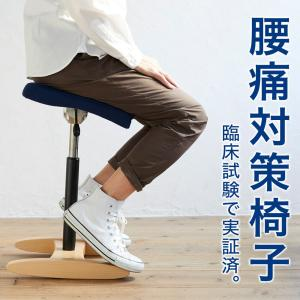 バランスチェア バランスチェアー 大人 大人用 バランスチェア 姿勢 椅子 腰痛対策椅子 バランスシナジー