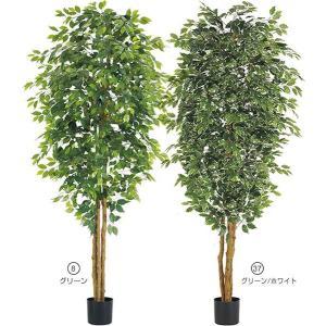 人工観葉植物 240cm フィカスツリー(ナチュラルトランク) 造花 [LETR7636]|ryoccadou