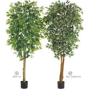 人工観葉植物 210cm フィカスツリー(ナチュラルトランク) 造花 [LETR7635]|ryoccadou