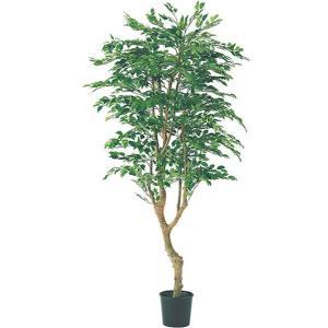 人工観葉植物 180cm フィカスツリー(ナチュラルトランク/2690)[LETR7592]|ryoccadou