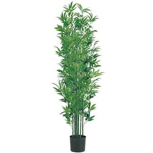 人工観葉植物 :タケ・ツリー 180cm 竹ツリー(ナチュラルトランク)[LETR7629]|ryoccadou