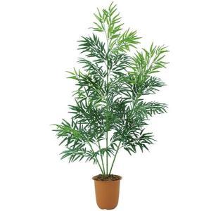 人工観葉植物 :タケ・ツリー 210cm タケツリー(4/1065)[LETR7610]|ryoccadou