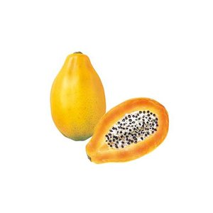 店舗装飾 170mm パパイヤハーフ 食品サンプル フルーツ 果物[DIFV7956]|ryoccadou