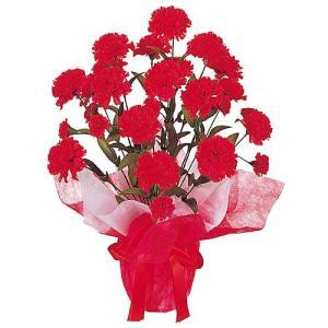 母の日 カーネーションポット(L) MOTHER'S DAY 飾り 造花[DEDE1739] ryoccadou