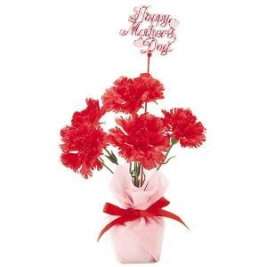 母の日 カーネーションポット(3) MOTHER'S DAY 造花 人工観葉植物[FLGD1683] ryoccadou