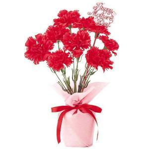 母の日 カーネーションポット(4) MOTHER'S DAY 造花 人工観葉植物[FLGD1684] ryoccadou