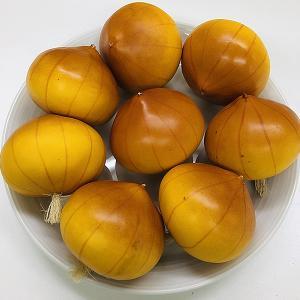 80mm オニオン 食品サンプル[sele-onion]|ryoccadou