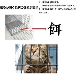 CO-Z 捕獲器 動物用 アニマルトラップ 捕獲かご 捕りワナ アニマルキャッチャー 動物キャッチャー 猫保護 踏板式 中小動物 M 66*|rysss