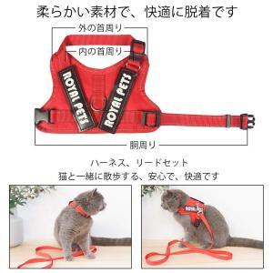SEHOO猫リード ハーネス 可愛い 抜けにくい 小型犬 胴輪 猫用胸当て 散歩用 安全 子猫 反射...