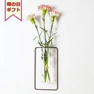 BAOYOUNI 壁掛け 花瓶 ミニ花器 ガラス製 透明 フラワーベース 一輪挿し おしゃれ 多肉植物 アンティーク (四角形, 黒色)|rysss
