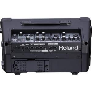 Roland ローランド ステレオアンプ CUBE Street EX|rysss