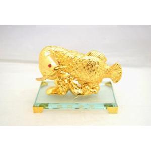 アロワナ 龍魚 振り向き 樹脂製置物 ガラス台座 銭鱗 中|ryu