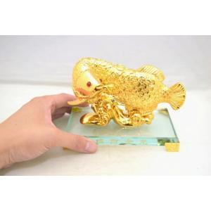 アロワナ 龍魚 振り向き 樹脂製置物 ガラス台座 銭鱗 中|ryu|06
