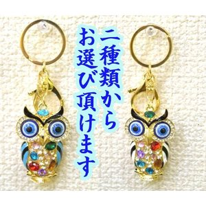 【メール便OK】 フクロウ 梟 七宝焼き キーホルダー 金属製 ラインストーン 選べる二種類|ryu