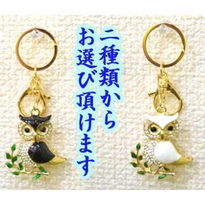【メール便OK】 フクロウ 梟 七宝焼き キーホルダー 金属製 ラインストーン 白黒 選べる二種類|ryu