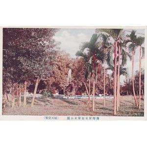 絵葉書 台湾屏東街屏東公園(順天堂製) ryuden
