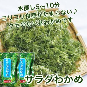 鳴門わかめ 茎サラダ コリコリ新食感! サラダわかめ 200g|ryugu-choi