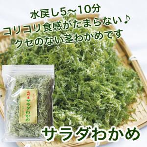 お徳用 鳴門わかめ 茎サラダ 大容量 コリコリ新食感! サラダわかめ 540g|ryugu-choi