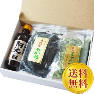 送料無料 【ギフト】人気者大容量セット お徳用 生わかめ、サラダわかめ、本格ポン酢 ryugu-choi