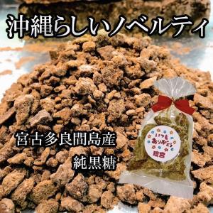 学園祭 文化祭 開店祝い 出産祝い イベント 純黒糖100g 10袋セット 宮古多良間島産|ryugu