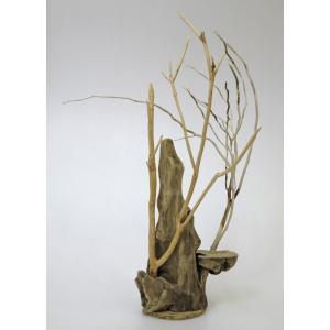 流木アート A0610  花台・飾り台 高さ64.5cm  流木のレア一点物 ディスプレィに最適|ryuubokua-to
