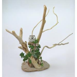 流木アートインテリア  A0722 花台・飾り台 高51.7cm レア素材 アートディスプレィに最適|ryuubokua-to