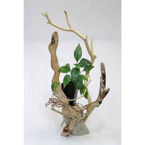 流木アート 花台 飾り台 A1189  高さ76.3cm  オブジェ・ディスプレィに最適|ryuubokua-to