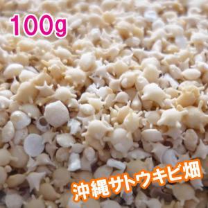 《おまけ付き♪》沖縄産 星の砂パック 100g