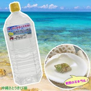 浜比嘉島の天然海水2L ryuuka 02