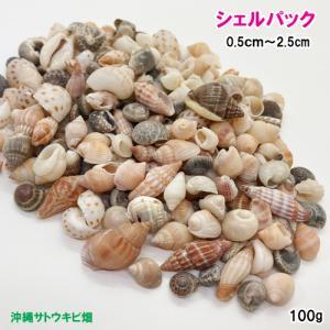 シェルパック 小さな貝がら 100g|ryuuka