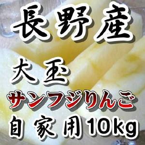 長野 サンふじりんご大玉 限定10kg 訳あり 送料無料 こだわり信州産サンふじりんご ご家庭用|s-asahiya