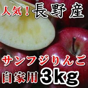 信州サンふじりんご 訳ありお試し こだわり信州産サンふじ りんご3kgご家庭用