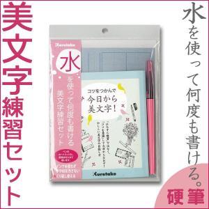 水を使って何度も書ける美文字練習セット / テキスト付/ DAW100-7/呉竹【メール便OK】|s-bunkadou