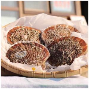 北海道寿都産 殻付き 活ホタテ 2年貝 3kg(15~30枚 時期によって異なります)  ナイフ付 寿都町 カネサ漁業 s-hokkaido