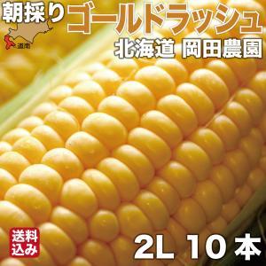 とうもろこし 北海道産 ゴールドラッシュ 2Lサイズ × 10本 朝採り 産地直送 スイートコーン ...
