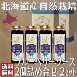 無添加 ブルーベリー デザートソース 詰め合せ ギフト  (150g 2本入×2箱) 北海道 自然栽培 送料無料 ハウレット農園|s-hokkaido