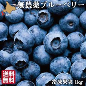 無農薬 冷凍ブルーベリー 1kg 4種ブレンド 冷凍果 フルーツ 北海道 農園直送 自然栽培 ハウレット農園|s-hokkaido