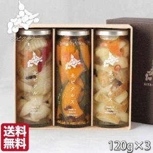 お歳暮 北ピクルス 無添加 北海道 3本セット (120g/瓶) かぼちゃ じゃがいも 玉ねぎ  ギフト 農家直送野菜 送料無料 s-hokkaido