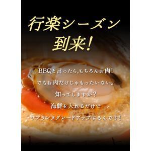 【お中元/ギフト/海鮮バーベキュー/BBQにも!】送料無料 7種20品の海鮮バーベキューセット 詰め合わせ(冷凍便)2セット以上で大磯屋焼きそば進呈 s-kotobuki 03