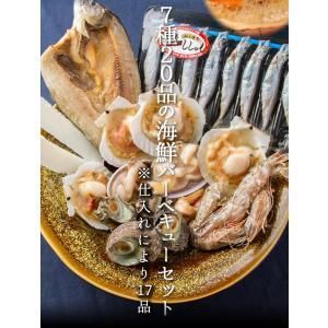 【お中元/ギフト/海鮮バーベキュー/BBQにも!】送料無料 7種20品の海鮮バーベキューセット 詰め合わせ(冷凍便)2セット以上で大磯屋焼きそば進呈 s-kotobuki 04