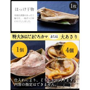 【お中元/ギフト/海鮮バーベキュー/BBQにも!】送料無料 7種20品の海鮮バーベキューセット 詰め合わせ(冷凍便)2セット以上で大磯屋焼きそば進呈 s-kotobuki 09