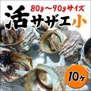 【お中元/ギフト】業務用サザエ 小サイズ 80g〜90g×10ヶ(冷凍便冷蔵便同梱可)