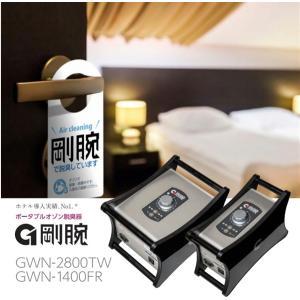 剛腕GWN-1400FR オーニット製オゾン機器 1台 1400mg/h 除菌   オゾン発生器 ウイルス除去  ウイルス対策 ウィルス 消毒 除去|s-label