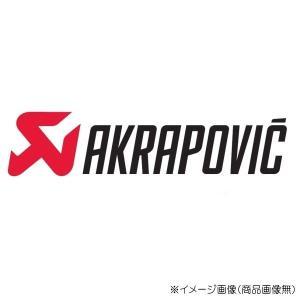 S-Y10SO15-HAPT ACTIVE アクティブ AKRAPOVIC [e1仕様] S/O チタン MT-10 16|s-need