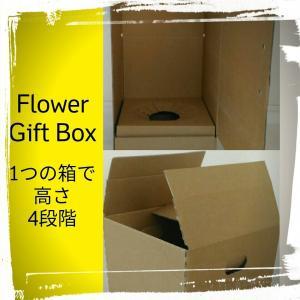 ギフトボックス 花 観葉植物 蘭 鉢花 対応可 発送箱 300x300x高さ4段階調整可 20枚/set|s-one-trading-jp
