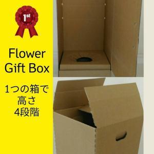 ギフトボックス 花 観葉植物 蘭 鉢花 対応可 発送箱 375x375x高さ4段階調整可 20枚/set|s-one-trading-jp